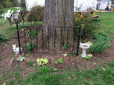 Oak Tree Garden